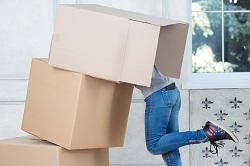 Cheap Removal Services in Denmark